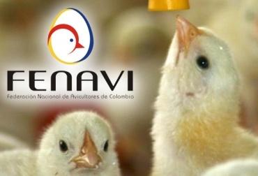 Sector avícola del país afectada por la devaluación del peso frente al dólar