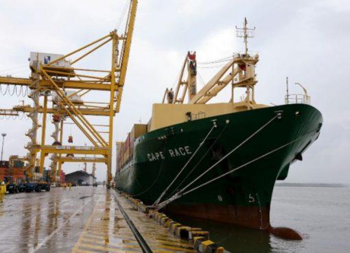 Reino Unido y Chile anuncian flexibilidad en los trámites para el comercio de productos agropecuarios