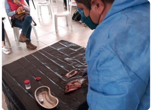 El ICA capacitó a productores acuícolas y personal técnico en el Quindío