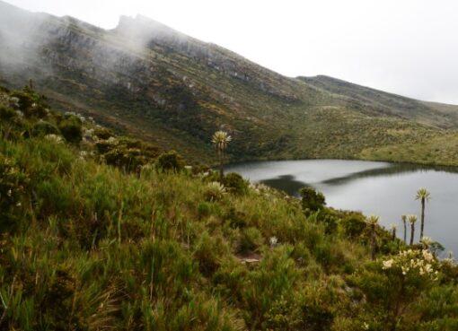 El Gobierno Nacional abrirá 10 parques nacionales para ecoturismo en el 2021
